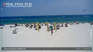 pink pony pub gulf shores webcam